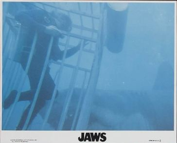 Jaws 01