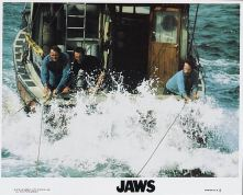 Jaws 04