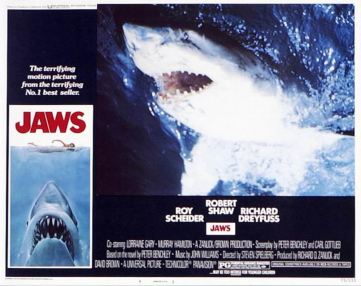 Jaws 05