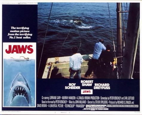 Jaws 07