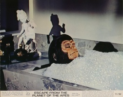 escape-from-the-planet-of-the-apes-lobby-card-n5-8x10-in-usa-1971-don-taylor-roddy-mcdowall